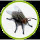 средства от мух